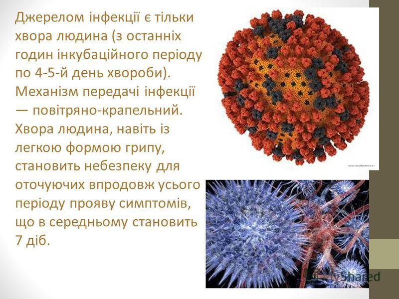 Джерелом інфекції є тільки хвора людина (з останніх годин інкубаційного періоду по 4-5-й день хвороби). Механізм передачі інфекції повітряно-крапельний. Хвора людина, навіть із легкою формою грипу, становить небезпеку для оточуючих впродовж усього пе