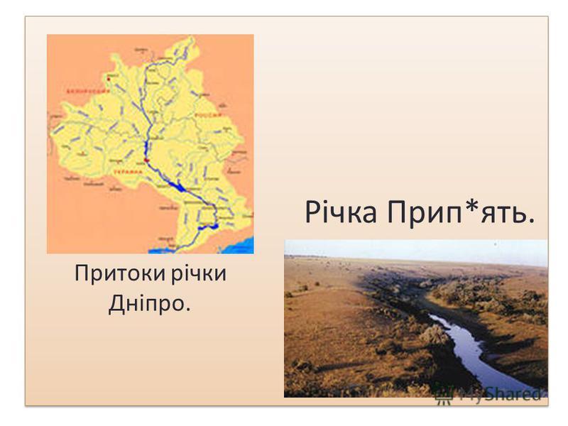 Гідрологія. У зоні сформувалась густа річкова мережа. Це ріки притоки Прип'яті і Дніпра. Прип'ять бере початок з крайньої північно-західної частини Волинської області, приймаючи такі найбільші притоки: Турію, Стохід, Стир, Горинь, Уборть. Дніпро пере