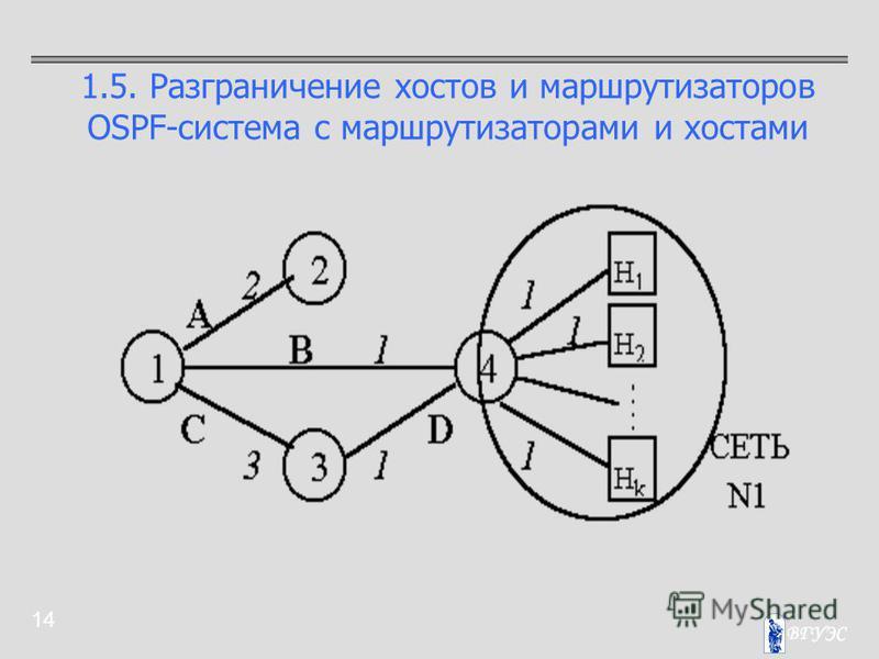 14 1.5. Разграничение хостов и маршрутизаторов OSPF-система с маршрутизаторами и хостами