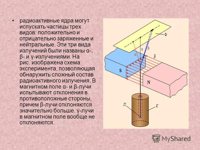 радиоактивные ядра могут испускать частицы трех видов: положительно и отрицательно заряженные и нейтральные. Эти три вида излучений были названы α-, β- и γ-излучениями. На рис. изображена схема эксперимента, позволяющая обнаружить сложный состав ради