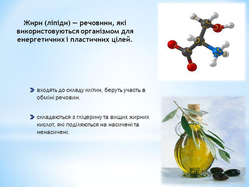 Жири (ліпіди) речовини, які використовуються організмом для енергетичних і пластичних цілей. входять до складу клітин, беруть участь в обміні речовин. складаються з гліцерину та вищих жирних кислот, які поділяються на насичені та ненасичені.