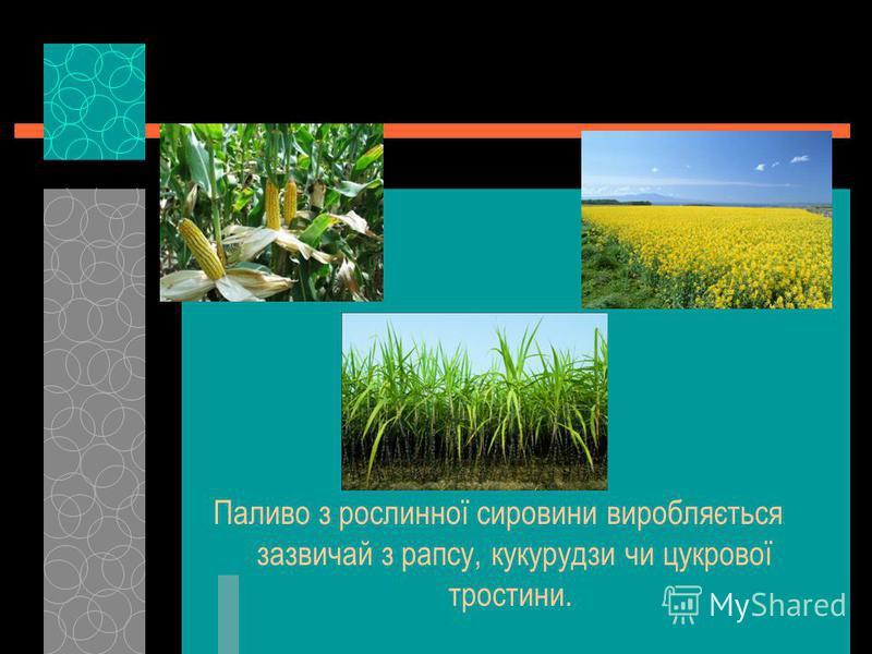 Паливо з рослинної сировини виробляється зазвичай з рапсу, кукурудзи чи цукрової тростини.