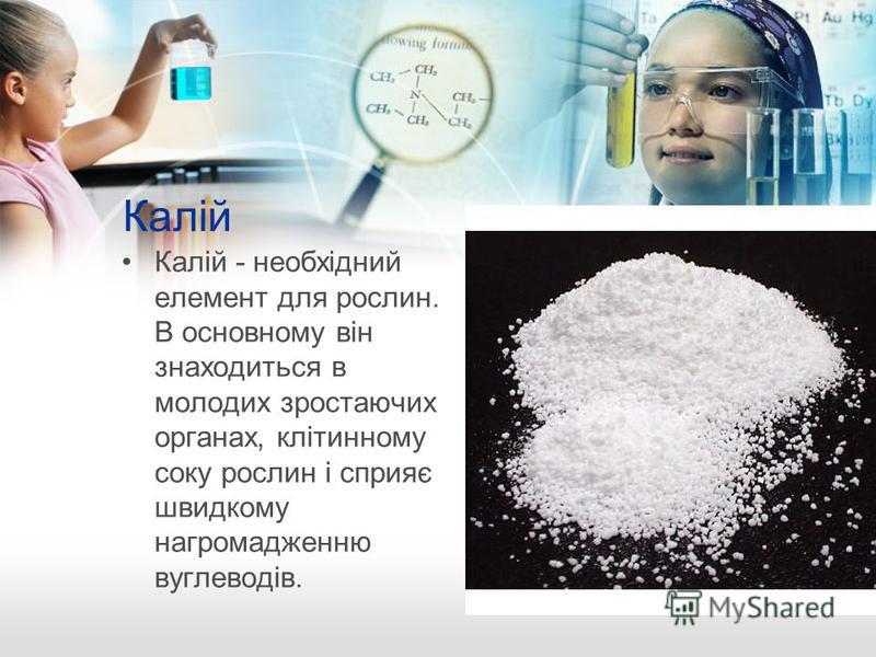 Калій Калій - необхідний елемент для рослин. В основному він знаходиться в молодих зростаючих органах, клітинному соку рослин і сприяє швидкому нагромадженню вуглеводів.