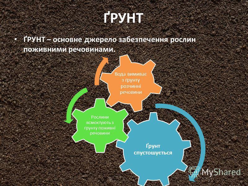 ҐРУНТ ҐРУНТ – основне джерело забезпечення рослин поживними речовинами. Ґрунт спустошується Рослини всмоктують з ґрунту поживні речовини Вода вимиває з ґрунту розчинні речовини