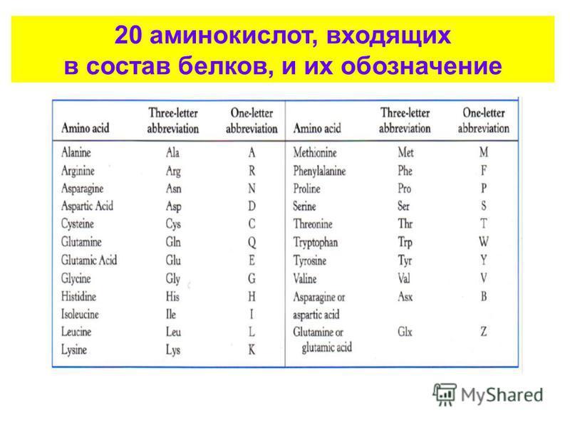 20 аминокислот, входящих в состав белков, и их обозначение