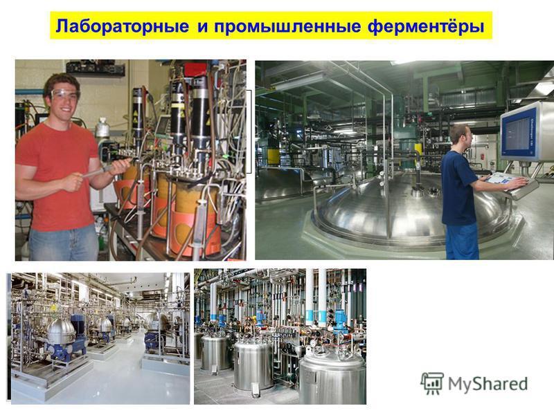 Лабораторные и промышленные ферментёры
