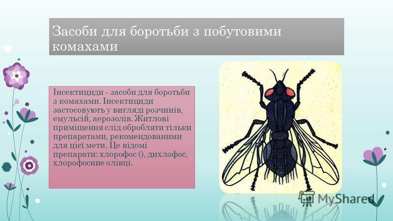 Засоби для боротьби з побутовими комахами Інсектициди - засоби для боротьби з комахами. Інсектициди застосовують у вигляді розчинів, емульсій, аерозолів. Житлові приміщення слід обробляти тільки препаратами, рекомендованими для цієї мети. Це відомі п
