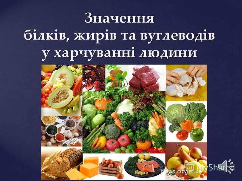 Значення білків, жирів та вуглеводів у харчуванні людини