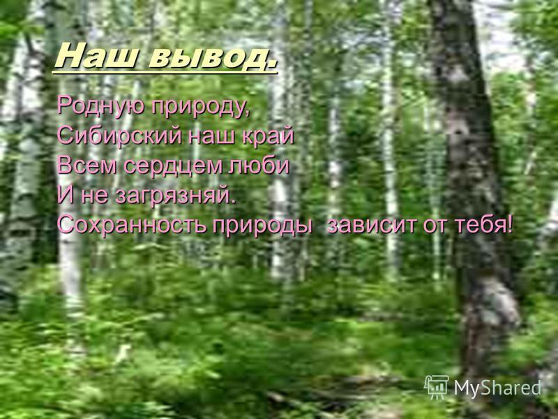 Наш вывод. Родную природу, Сибирский наш край Всем сердцем люби И не загрязняй. Сохранность природы зависит от тебя!