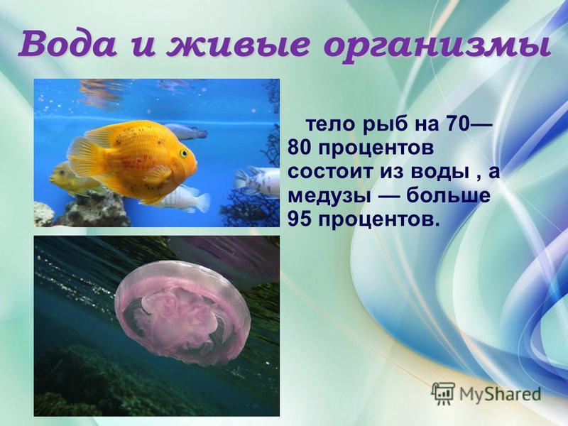 Вода и живые организмы тело рыб на 70 80 процентов состоит из воды, а медузы больше 95 процентов.
