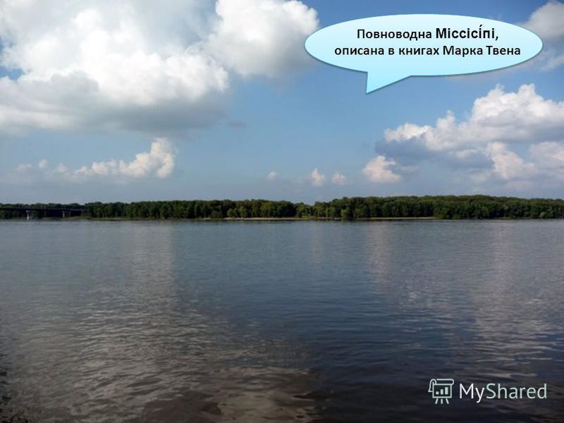 Повноводна Міссісі́пі, описана в книгах Марка Твена