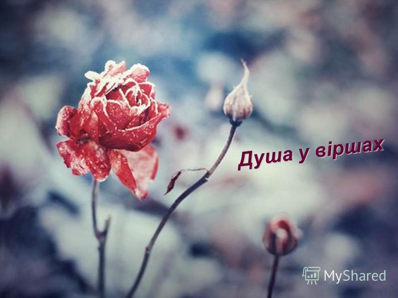 Душа у віршах