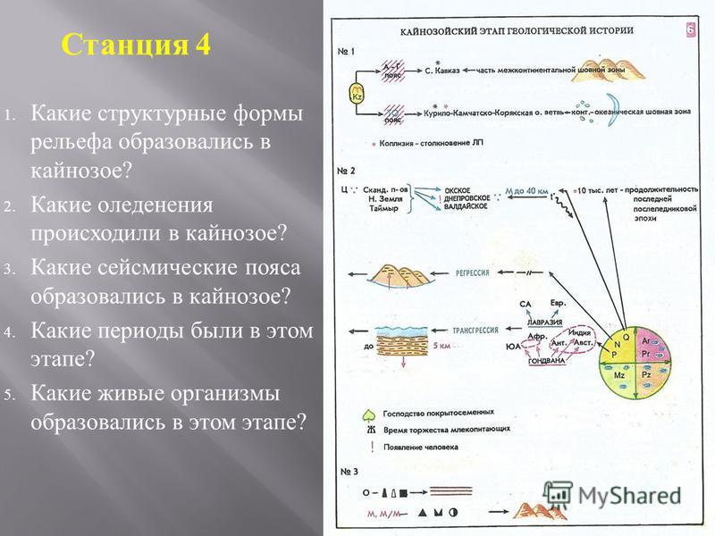 1. Какие структурные формы рельефа образовались в кайнозое ? 2. Какие оледенения происходили в кайнозое ? 3. Какие сейсмические пояса образовались в кайнозое ? 4. Какие периоды были в этом этапе ? 5. Какие живые организмы образовались в этом этапе ?