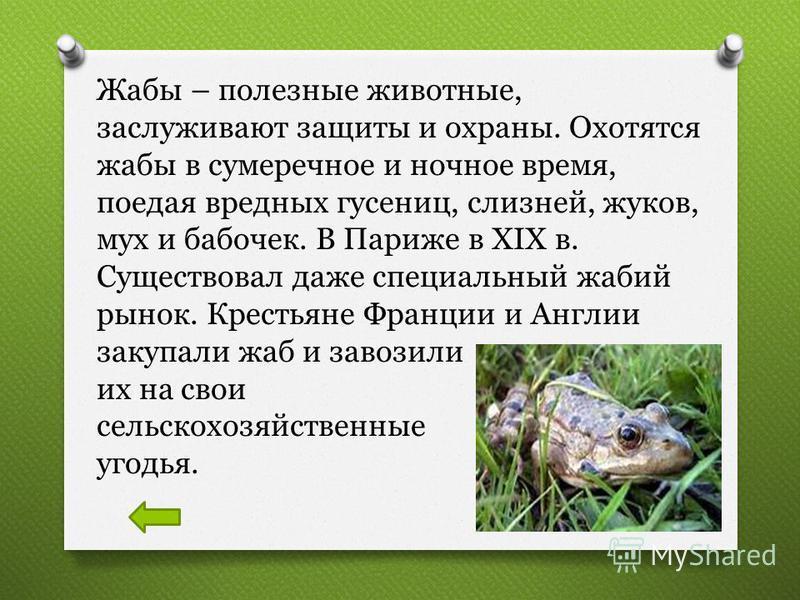 Жабы – полезные животные, заслуживают защиты и охраны. Охотятся жабы в сумеречное и ночное время, поедая вредных гусениц, слизней, жуков, мух и бабочек. В Париже в XIX в. Существовал даже специальный жабий рынок. Крестьяне Франции и Англии закупали ж