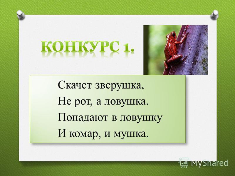Скачет зверушка, Не рот, а ловушка. Попадают в ловушку И комар, и мушка. Скачет зверушка, Не рот, а ловушка. Попадают в ловушку И комар, и мушка.