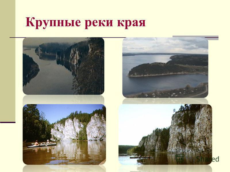 Крупные реки края