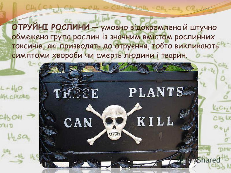 ОТРУЙНІ РОСЛИНИ умовно відокремлена й штучно обмежена група рослин із значним вмістом рослинних токсинів, які призводять до отруєння, тобто викликають симптоми хвороби чи смерть людини і тварин.