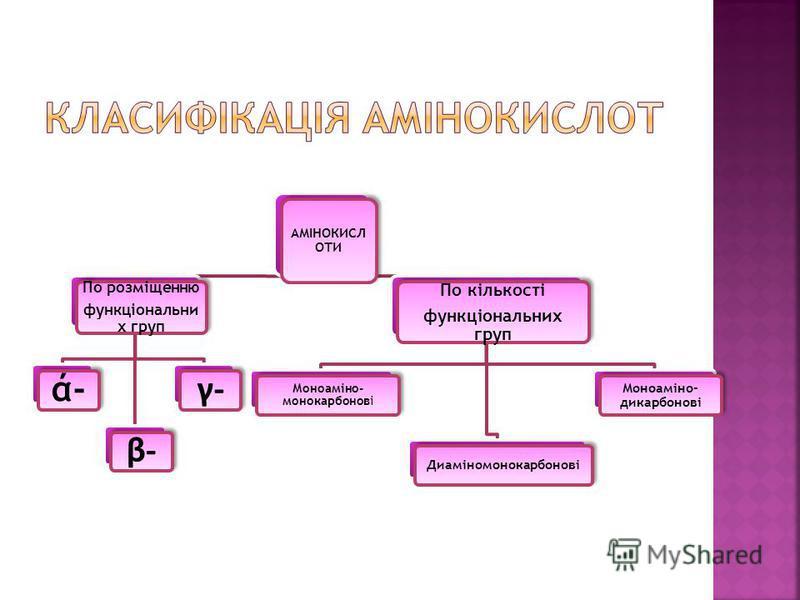 АМІНОКИСЛ ОТИ По розміщенню функціональни х груп ά-ά- β-β- γ-γ- По кількості функціональних груп Моноаміно- монокарбонові Диаміномонокарбонові Моноаміно- дикарбонові