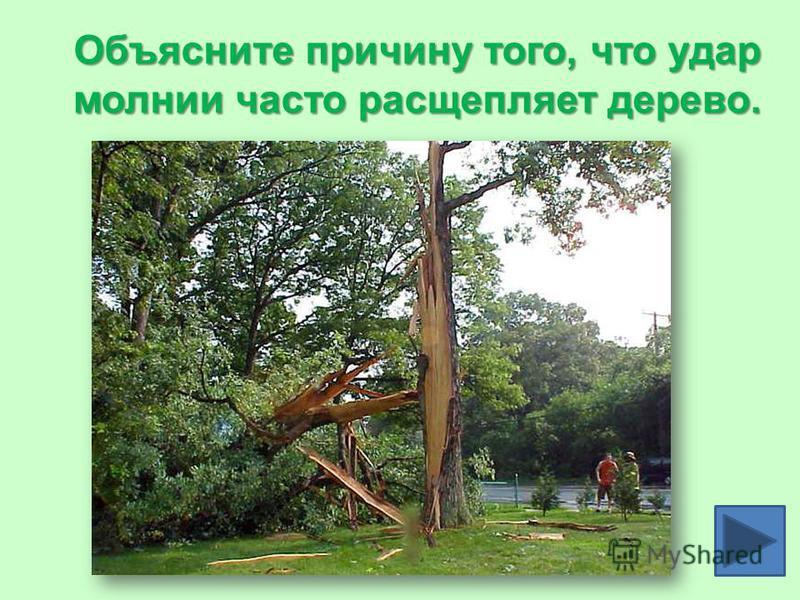 Объясните причину того, что удар молнии часто расщепляет дерево.