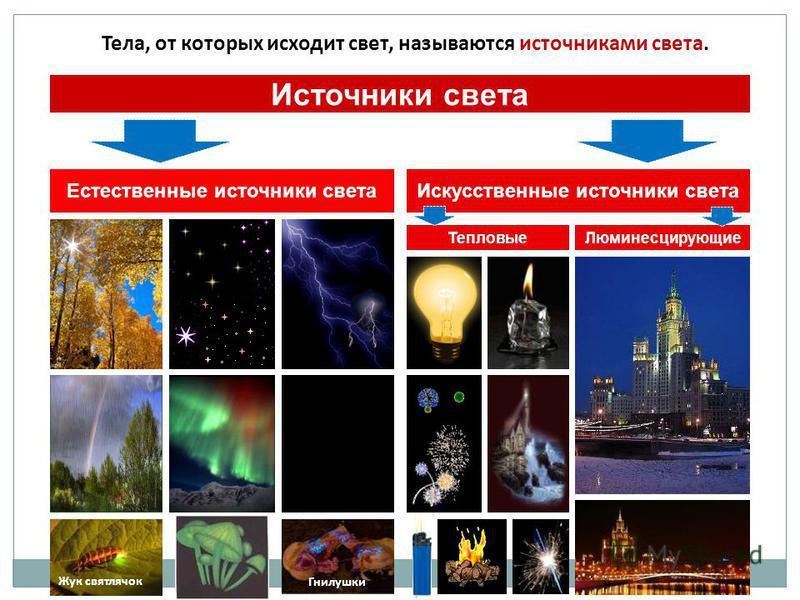 Тела, от которых исходит свет, называются источниками света. Источники света Естественные источники света Искусственные источники света Тепловые Люминесцирующие Жук светлячок Гнилушки