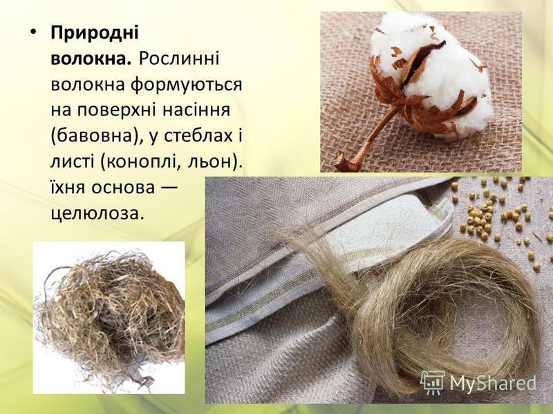 Природні волокна. Рослинні волокна формуються на поверхні насіння (бавовна), у стеблах і листі (коноплі, льон). їхня основа целюлоза.