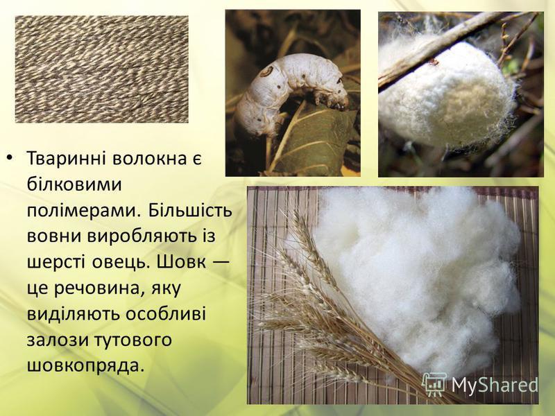 Тваринні волокна є білковими полімерами. Більшість вовни виробляють із шерсті овець. Шовк це речовина, яку виділяють особливі залози тутового шовкопряда.