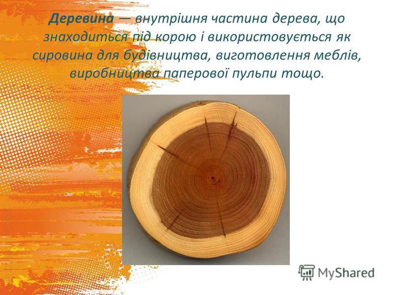 Деревина внутрішня частина дерева, що знаходиться під корою і використовується як сировина для будівництва, виготовлення меблів, виробництва паперової пульпи тощо.