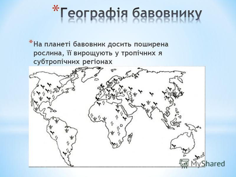 * На планеті бавовник досить поширена рослина, її вирощують у тропічних я субтропічних регіонах