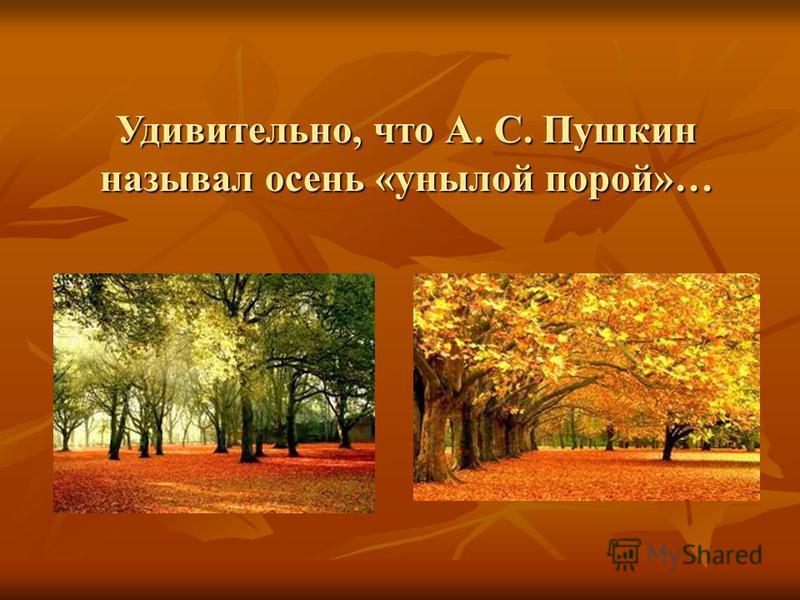 Удивительно, что А. С. Пушкин называл осень «унылой порой»…
