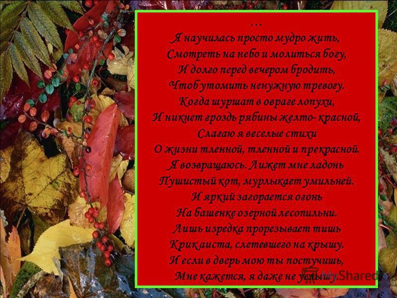 … Я научилась просто мудро жить, Смотреть на небо и молиться богу, И долго перед вечером бродить, Чтоб утомить ненужную тревогу. Когда шуршат в овраге лопухи, И никнет гроздь рябины желто- красной, Слагаю я веселые стихи О жизни тленной, тленной и пр