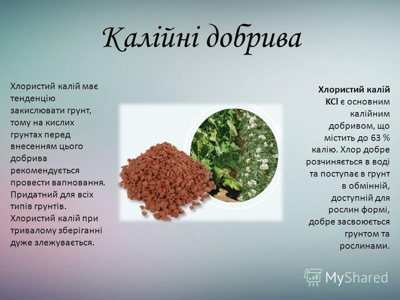 Калійні добрива Хлористий калій KCl є основним калійним добривом, що містить до 63 % калію. Хлор добре розчиняється в воді та поступає в грунт в обмінній, доступній для рослин формі, добре засвоюється грунтом та рослинами. Хлористий калій має тенденц