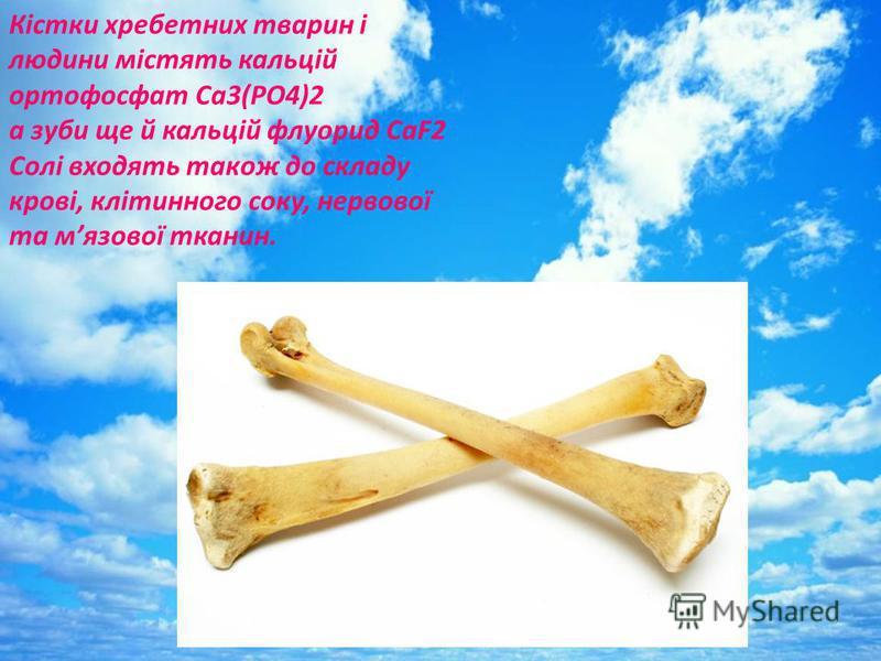 Кістки хребетних тварин і людини містять кальцій ортофосфат Ca3(PO4)2 а зуби ще й кальцій флуорид CaF2 Солі входять також до складу крові, клітинного соку, нервової та мязової тканин.