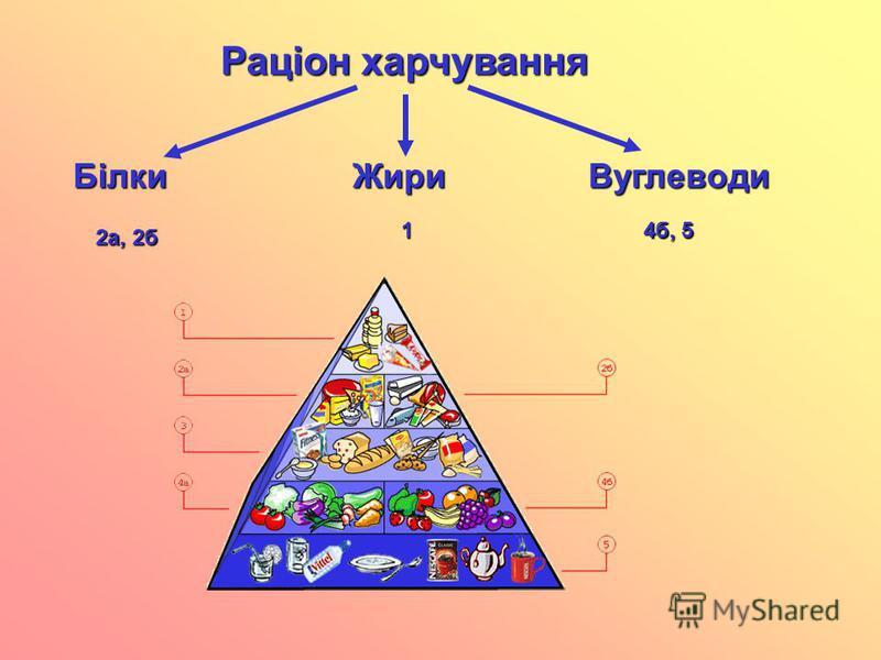 Раціон харчування БілкиЖириВуглеводи 2а, 2б 1 4б, 5