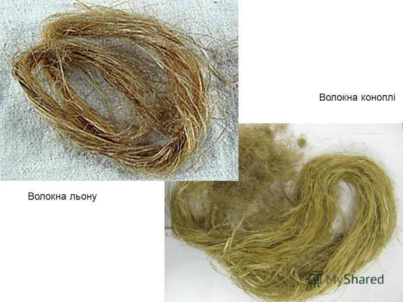 Волокна льону Волокна коноплі