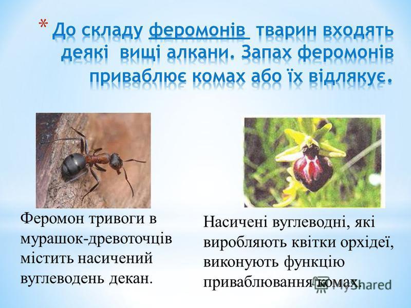 Насичені вуглеводні, які виробляють квітки орхідеї, виконують функцію приваблювання комах. Феромон тривоги в мурашок-древоточців містить насичений вуглеводень декан.
