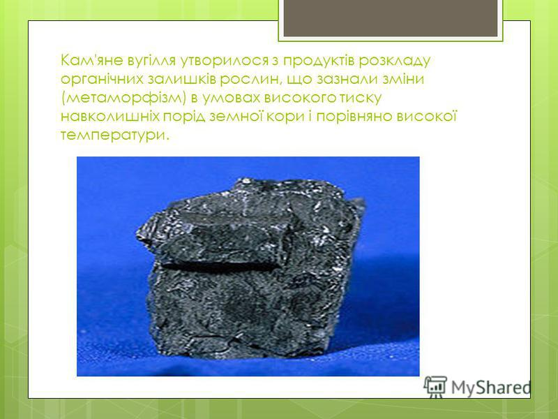 Кам'яне вугілля утворилося з продуктів розкладу органічних залишків рослин, що зазнали зміни (метаморфізм) в умовах високого тиску навколишніх порід земної кори і порівняно високої температури.