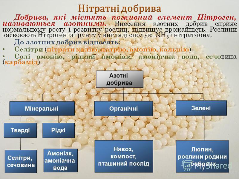 Нітратні добрива Добрива, які містять поживний елемент Нітроген, називаються азотними. В несення азотних добрив сприяє нормальному росту і розвитку рослин, підвищує врожайність. Рослини засвоюють Нітроген із ґрунту у вигляді сполук NН 3 і нітрат-іона