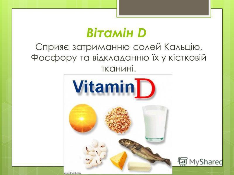 Вітамін D Сприяє затриманню солей Кальцію, Фосфору та відкладанню їх у кістковій тканині.