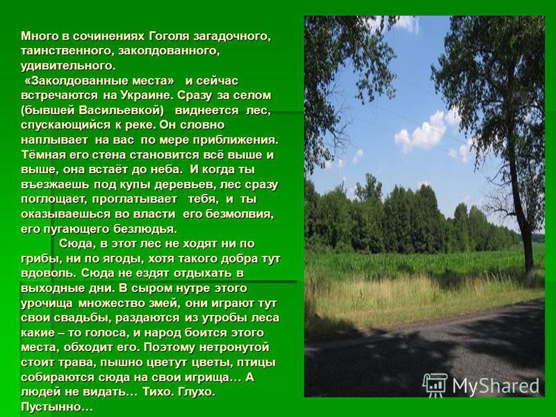 Много в сочинениях Гоголя загадочного, таинственного, заколдованного, удивительного. «Заколдованные места» и сейчас встречаются на Украине. Сразу за селом (бывшей Васильевкой) виднеется лес, спускающийся к реке. Он словно наплывает на вас по мере при