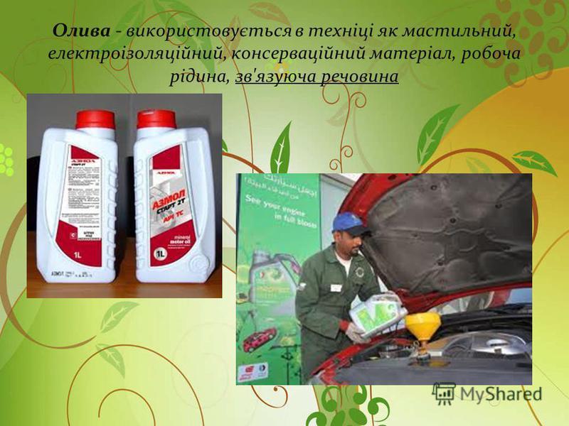 Олива - використовується в техніці як мастильний, електроізоляційний, консерваційний матеріал, робоча рідина, зв'язуюча речовина