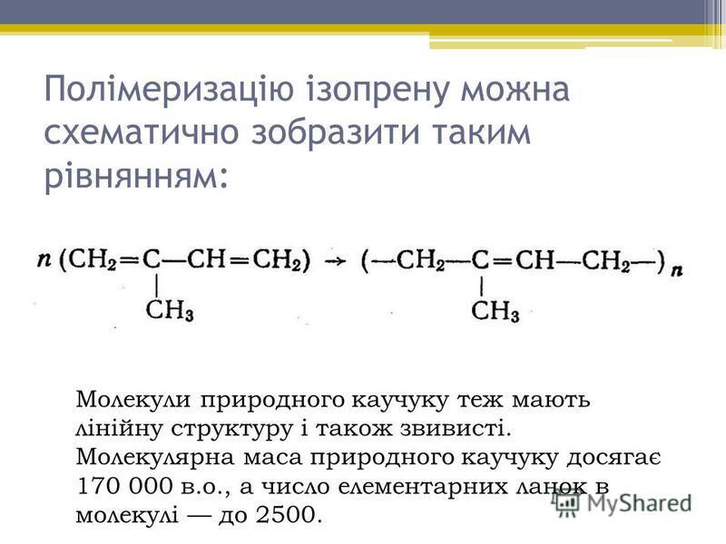 Полімеризацію ізопрену можна схематично зобразити таким рівнянням: Молекули природного каучуку теж мають лінійну структуру і також звивисті. Молекулярна маса природного каучуку досягає 170 000 в.о., а число елементарних ланок в молекулі до 2500.