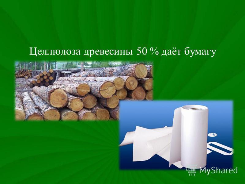 Целлюлоза древесины 50 % даёт бумагу