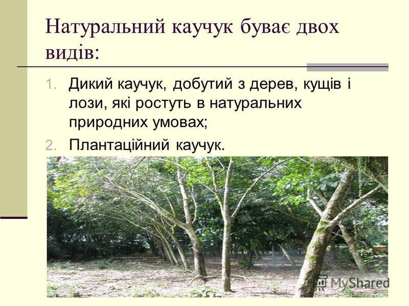 Натуральний каучук буває двох видів: 1. Дикий каучук, добутий з дерев, кущів і лози, які ростуть в натуральних природних умовах; 2. Плантаційний каучук.