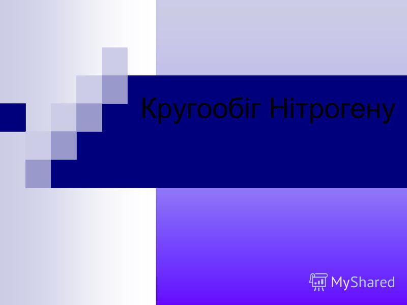 Кругообіг Нітрогену