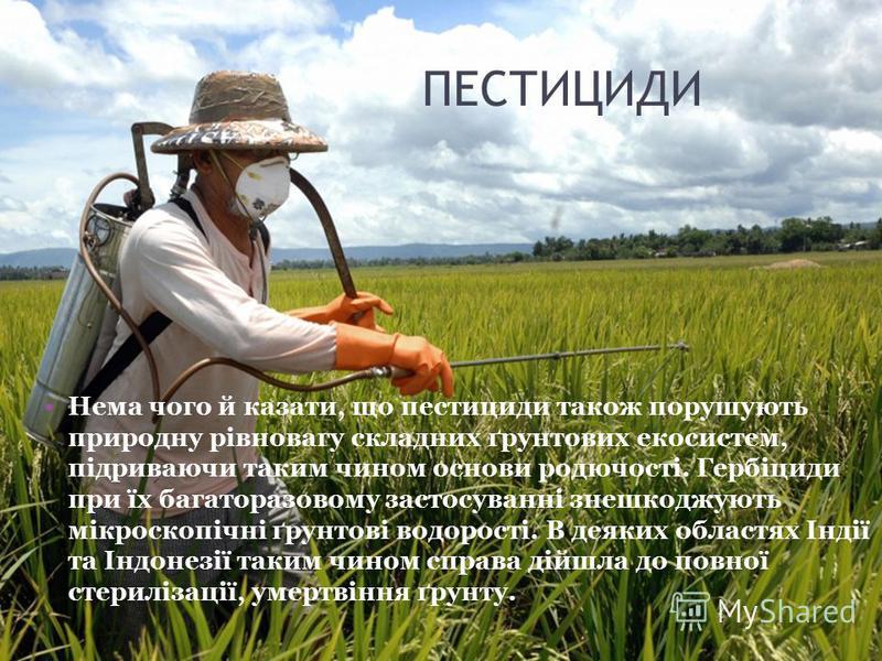 Нема чого й казати, що пестициди також порушують природну рівновагу складних ґрунтових екосистем, підриваючи таким чином основи родючості. Гербіциди при їх багаторазовому застосуванні знешкоджують мікроскопічні ґрунтові водорості. В деяких областях І