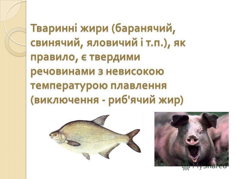 Тваринні жири ( баранячий, свинячий, яловичий і т. п.), як правило, є твердими речовинами з невисокою температурою плавлення ( виключення - риб ' ячий жир )