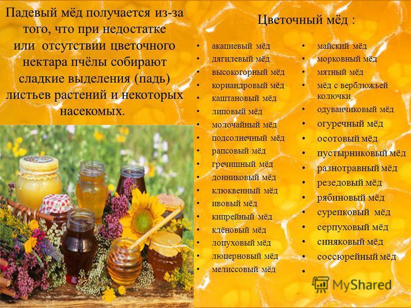 Падевый мёд получается из-за того, что при недостатке или отсутствии цветочного нектара пчёлы собирают сладкие выделения (падь) листьев растений и некоторых насекомых. акациевый мёд дягилевый мёд высокогорный мёд кориандровый мёд каштановый мёд липов