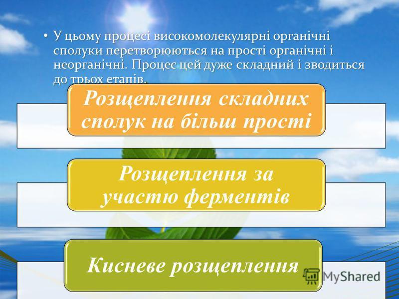 У цьому процесі високомолекулярні органічні сполуки перетворюються на прості органічні і неорганічні. Процес цей дуже складний і зводиться до трьох етапів. У цьому процесі високомолекулярні органічні сполуки перетворюються на прості органічні і неорг