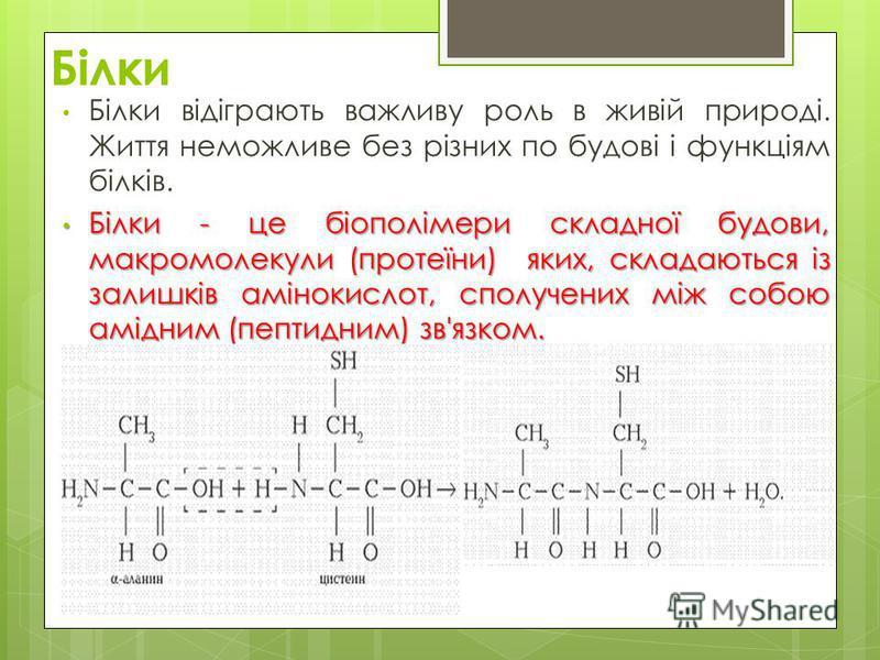 Білки Білки відіграють важливу роль в живій природі. Життя неможливе без різних по будові і функціям білків. Білки - це біополімери складної будови, макромолекули (протеїни) яких, складаються із залишків амінокислот, сполучених між собою амідним (пеп