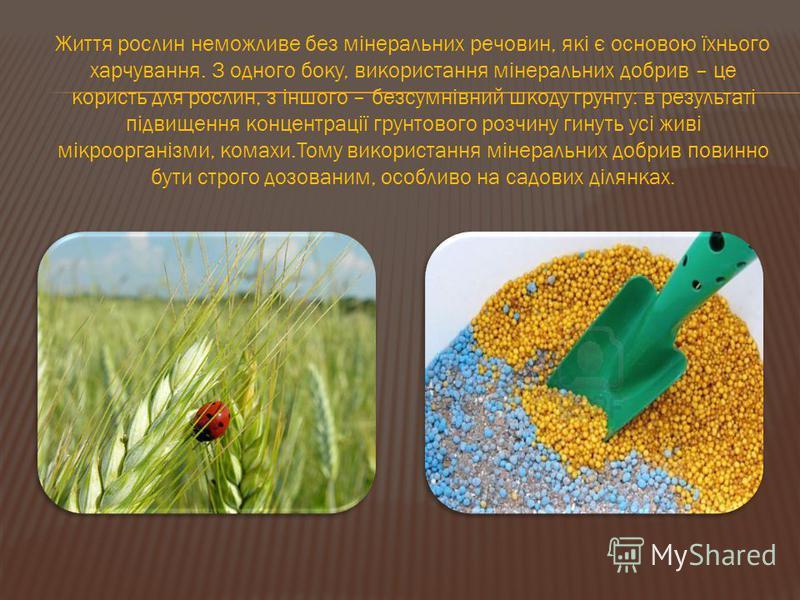 Життя рослин неможливе без мінеральних речовин, які є основою їхнього харчування. З одного боку, використання мінеральних добрив – це користь для рослин, з іншого – безсумнівний шкоду грунту: в результаті підвищення концентрації грунтового розчину ги
